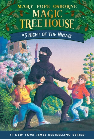 Book Cover for Night of the Ninjas