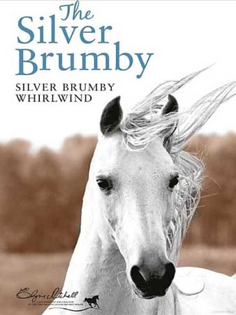 Book Cover for Silver Brumby Whirlwind