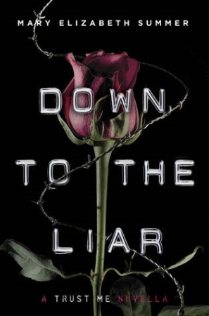 Book Cover for Down to the Liar