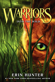 Book Cover for Warriors